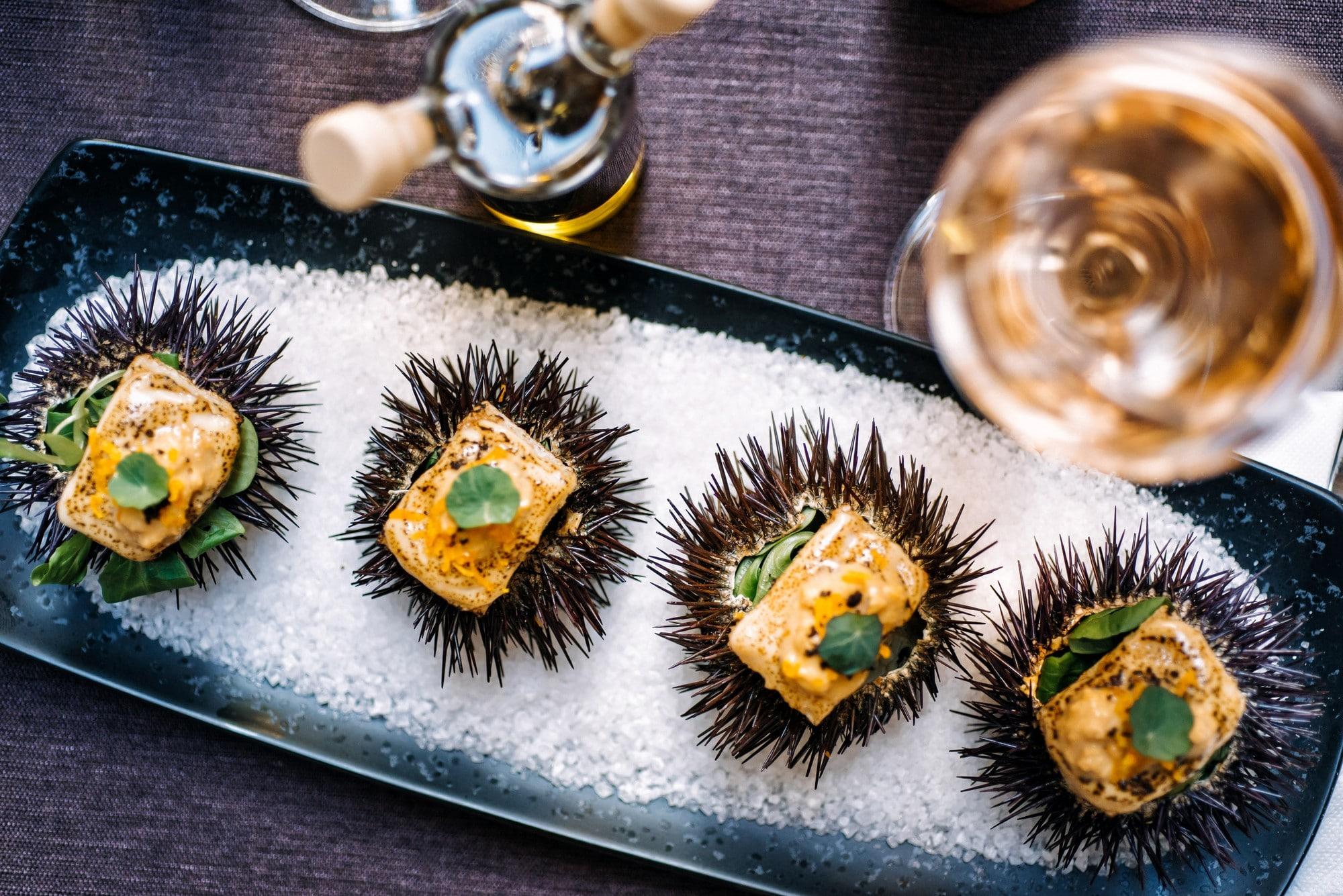 sea urchin lucin kantun